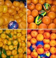 Свежие овощи и фрукты из Турции